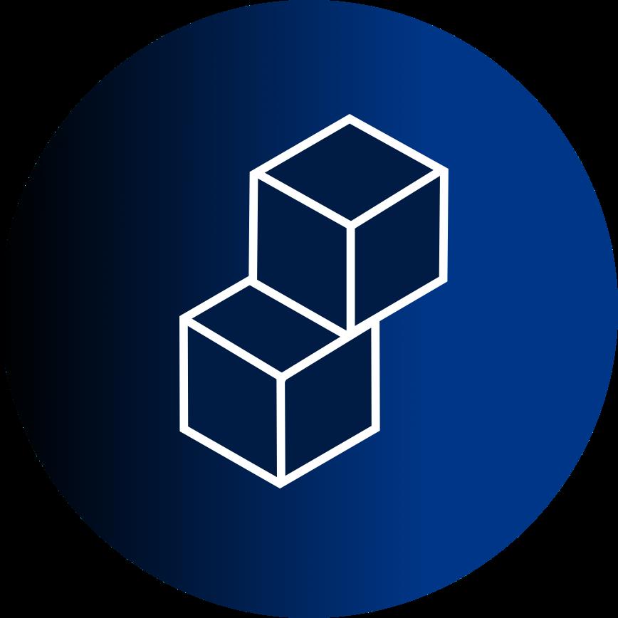 BlockchainPunk Logo